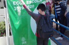 Bandeira Verde 2019/2020
